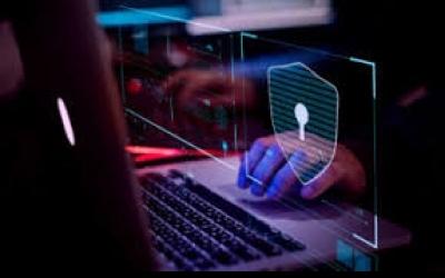 Um a cada 5 brasileiros tem identidade roubada na internet